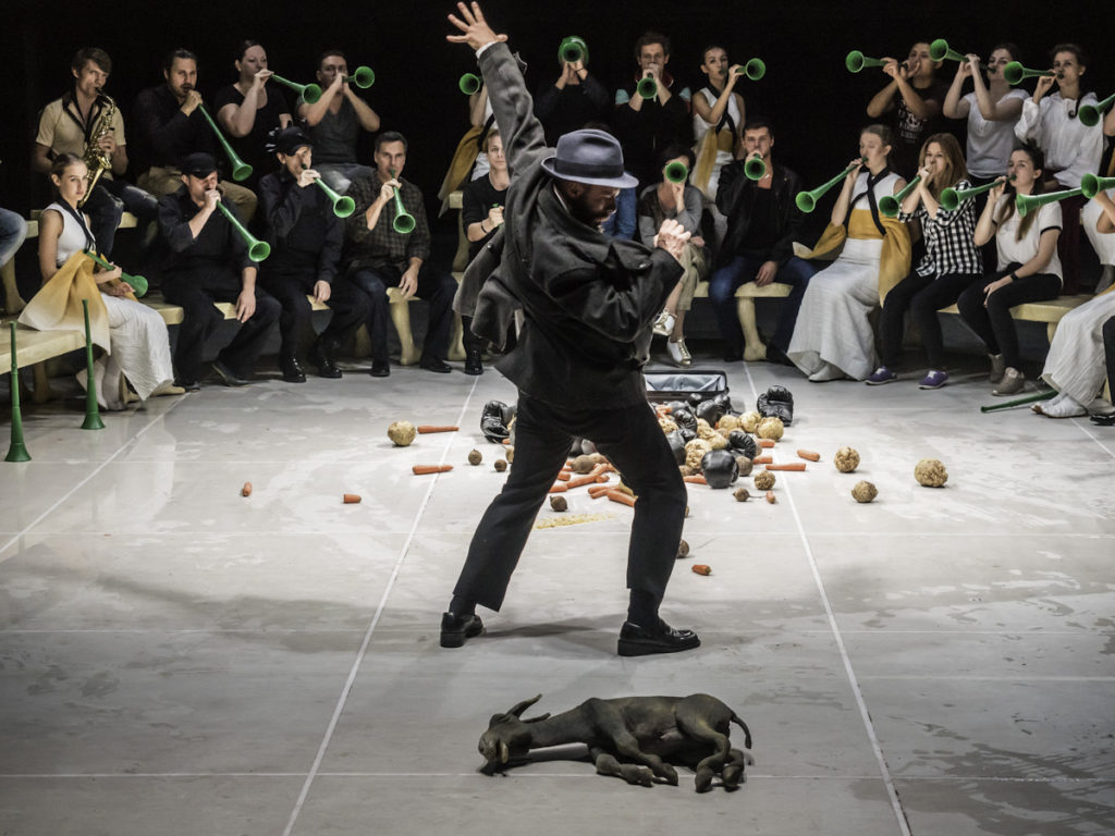 Золотой осел, Электротеатр Станиславский, фестиваль театра NET 2016, dozado