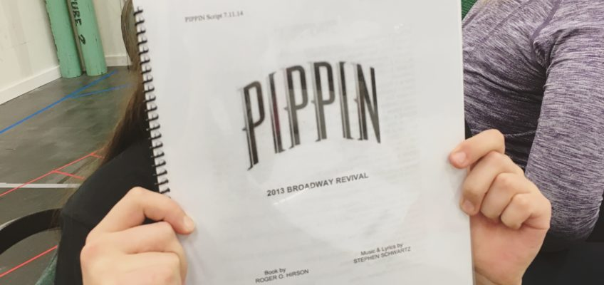 pippin, мюзикл, бродвей, джаз, танец, светлана хоружина, дневник, джазовый, dozado, фосси