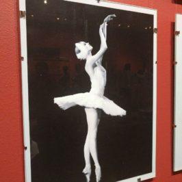 Выставка «Бенуа де ла Данс – 25 лет» в Театральном музее имени А. А. Бахрушина