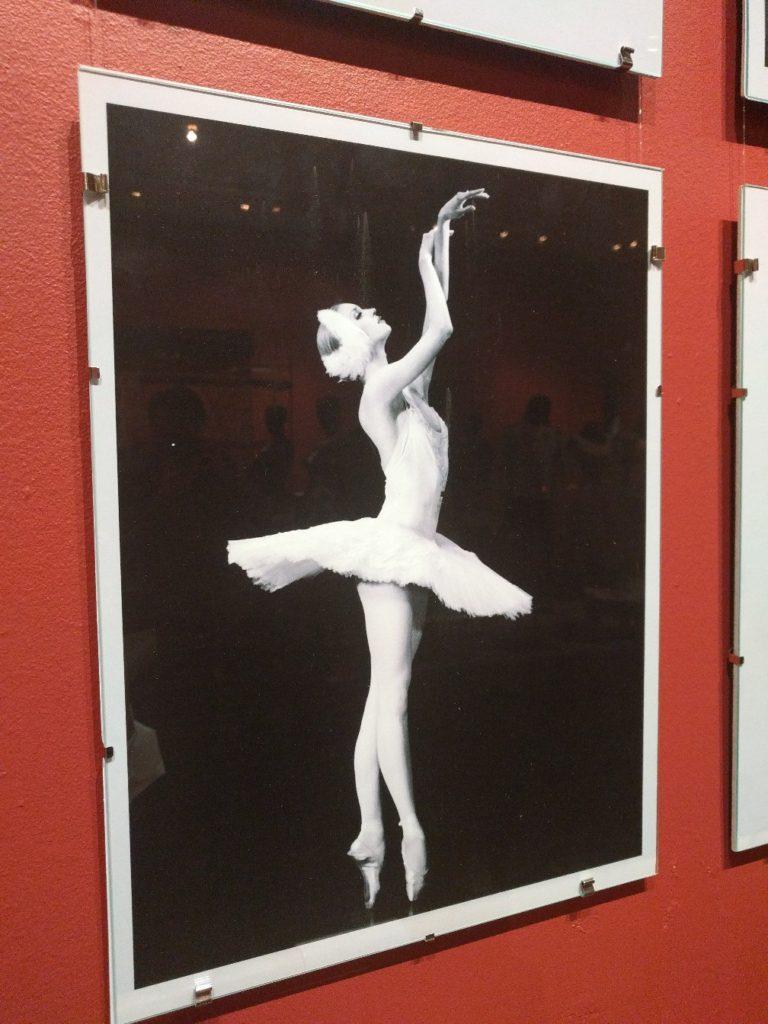 театральный музей Бахрушина, выставка, бенуа де ла данс 25, балет. dozado