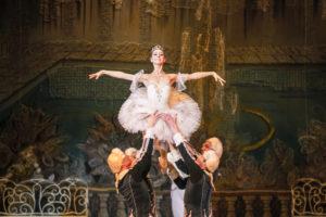 Летний фестиваль Театра Классического балета