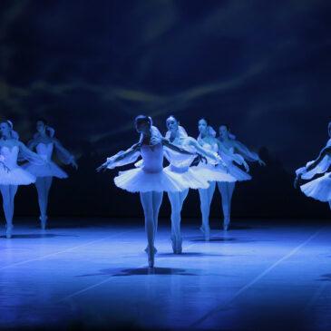 Романтический балет. Фотогалерея Андрея Степанова