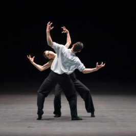 бенуа де ла данс, балет, большой театр